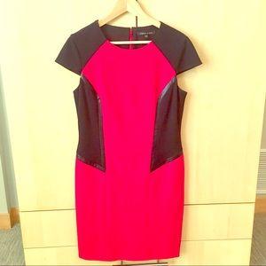 Cynthia Steffe Color Block Dress
